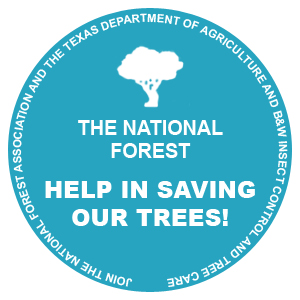 National Forest Help In Saving Our Trees Image