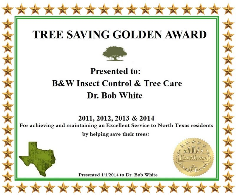 tree-savings-golden-award-certificate